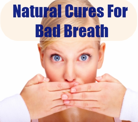 Home Remedies For Bad Breath  How To Cure Bad Breath. Northwest University Of Politics And Law. Computer Science Ebooks Self Storage Tampa Fl. Colonial Penn Complaints Sunpower Solar Lease. Plumbing Supply Vancouver Wa. Ged Online Classes In Texas Fast Track Lpn. Saginaw Arts And Sciences Academy. Florists Houston Texas Largest Cable Provider. Cable Providers In Columbia Sc