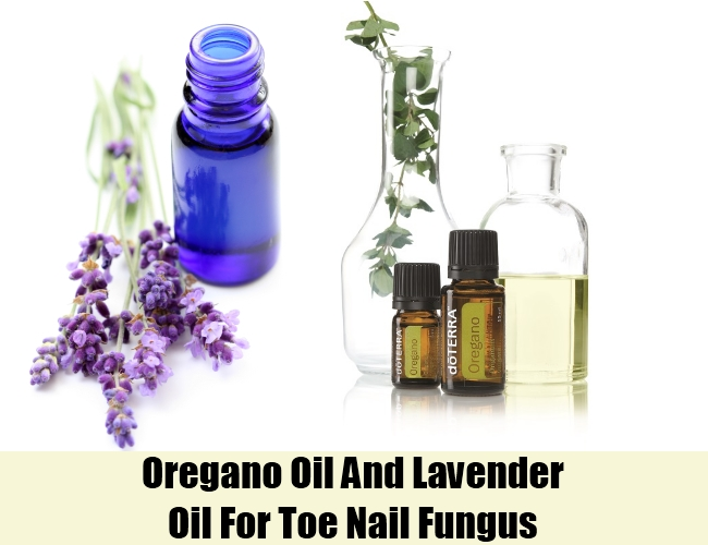 Oregano Oil And Lavender Oil