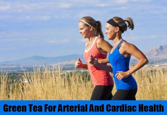 Arterial And Cardiac Health