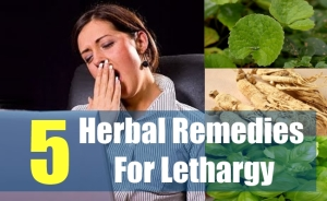 5 Best Herbal Remedies For Lethargy